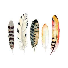 Watercolor and Ink Feather Print  Tribal Art  by SnoogsAndWilde, $28.00