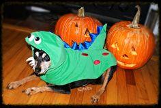 https://flic.kr/p/Ae9HW9 | Halloween