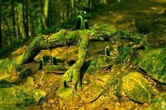 Créature sylvestre #1  http://www.graphiklab.net/