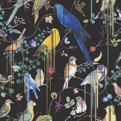 Birds Sinfonia by Christian Lacroix - Black - Wallpaper : Wallpaper Direct Bird Wallpaper, Black Wallpaper, Wallpaper Toilet, Salon Wallpaper, Chinoiserie Wallpaper, Wallpaper Online, Wallpaper Ideas, Iphone Wallpaper, Haute Couture Gowns