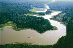 El Amazonas Desconocido La Cuna de la Vida  - el amazonas la selva encan...