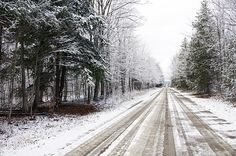 Go the distance. Run far and fast and don't look back. Snowy Pictures, Tree Line, Distance, Country Roads, Wallpapers, Wall Art, Prints, Outdoor, Outdoors