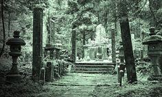 """Secret Koi Exchange op het kerkhof...   We namen een andere route dan ik inmiddels gewend was terug naar de Koifarm en ik vroeg: """"Doko-ni ikimasu ka?"""" Hetgeen zoveel betekent als """"Waar gaan we heen?"""" Het antwoord verstond ik niet, maar de betekenis liet niet lang op zich wachten.   http://www.koiquestion.be/2014/12/14/secret-koi-exchange-op-het-kerkhof/"""