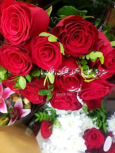 24 Best صور ورد Images Flowers Flower Pictures Romantic Flowers