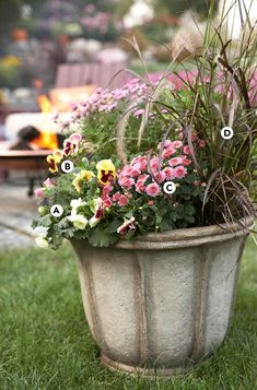 Container flower gardening is all about balance. Contrast autumn's bold reds, oranges, and yellows with blooms that boast soft shades of pink, lavender, and burgundy. #fallcontainergarden #containergardenplans #fallgardening #flowerpots #bhg Fall Container Plants, Fall Containers, Container Flowers, Container Gardening, Flower Gardening, Flowering Kale, Fall Window Boxes, Ornamental Cabbage, Flowers