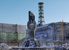 Pájaros de Chernóbil evolucionaron para soportar laradiación