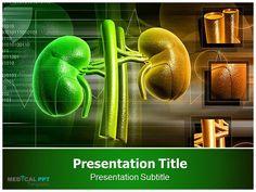 #Kidney http://www.medicalppttemplates.com/medical-ppt-templates.aspx/Kidney-1409
