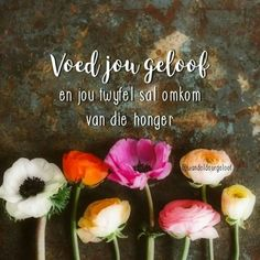 Voed jou geloof en jou twyfel sal omkom van die honger... Christian Women, Christian Quotes, Good Morning Inspirational Quotes, Goeie More, Afrikaans Quotes, Fancy Words, Love Me Quotes, Life Quotes, The Secret Book