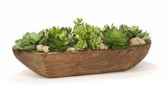 1979# - Hen and Chicken mixed succulents in Natural wooden tray
