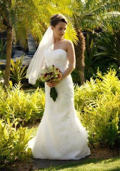 wedding gown collection in bellevue on pinterest wedding gowns
