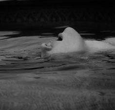 water | surrender | relax | surface | sensation |