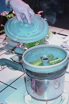 Vegetable Steamer - Mt. Desert - 2 qt