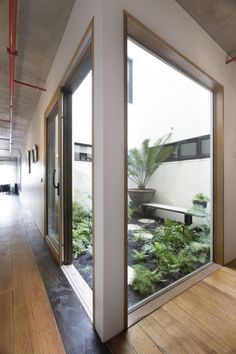 Small internal courtyard / lightwell More