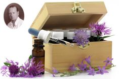 DMSO jako lek nr 1 w każdej apteczce | Na zdrowie Tobie Aix En Provence, Elixir Floral, Anxiety, Herbs, Grief, Personality, Wild Flowers, Bach Flowers, Naturopathy