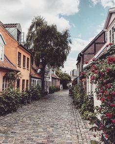 The old cobblestone street #Møllestien in Aarhus, Denmark