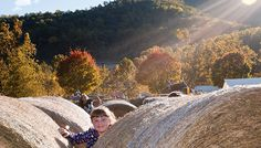 24 Virginia Festivals for Your Fall Weekends | Virginia's Travel Blog | Bloglovin'