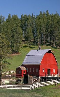 Red Barn..White Barnyard Fence