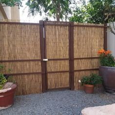 Japanese inspired privacy screen by yours truly.  #greenscenelandscapeservices. #japanesegarden #waterwisegardening by lowbars_chuck #waterwise #waterwisegardening #drought #droughttolerant