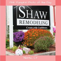 #PinkPumpkin #PhotoOfTheDay #SmithsAcresPumpkins #ShawRemodeling#Niantic Pumpkin Photos, Pink Pumpkins, Will Smith, Create, Garden, Inspiration, Shopping, Biblical Inspiration, Garten