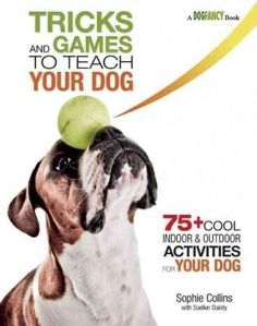 Tricks and Games to Teach Your Dog: 75+ Fun Indoor & Outdoor Activities for Your Dog
