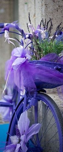 Purple bicycle ♥ ♥ Paint that old bike and use it as an accent in your garden. Brilliant idea! www.paintingyouwithwords.com