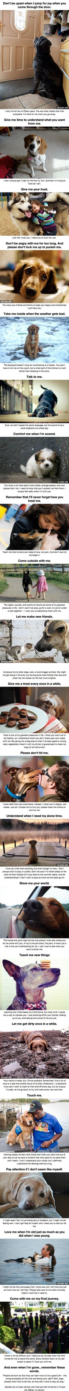 This makes me have tears. I love animals. My dogs are my closest guys. I can't imagine my life without them and I don't think I'll be able to get another after my babies. Losing them will hurt too much.