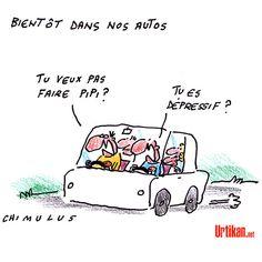 Sécurité routière - Dessin du jour - Urtikan.net