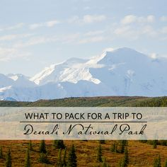Alaska bound? Here's what to pack!