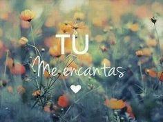 Tu. me. encantas.                                                       …