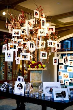 Such a creative photo display with pictures hanging from a tree! Floral by Hydrangea Floral. Photo by Traina Photography. #wedding #tree #photodisplay