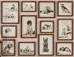 Grace+Feyock+Canine+Collage+Print+Wall+Art+-+12-Pc+Set