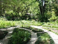 Botanical Gardens Gainesville Florida