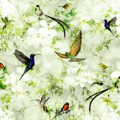 Birds Wallpaper. This wallpaper brings a breath of fresh air into a any room with it's bright and calm features. Inspired by birds and foliage designed on to a textured background. This wallpaper is part of the All Things British Range.
