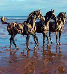 Boys' day at the beach in Devon, England • sculpture / photo: Heather Jansch on Facebook