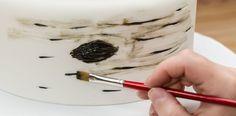 How-To Make a Rustic Birch Bark Tiered Cake - Cakes.com