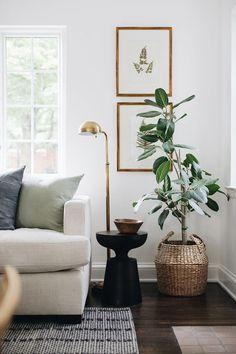 Living Room Inspiration, Home Decor Inspiration, Decor Ideas, Home Living Room, Living Spaces, Plants In Living Room, Living Room Corners, Lamps For Living Room, Small Living Room Designs