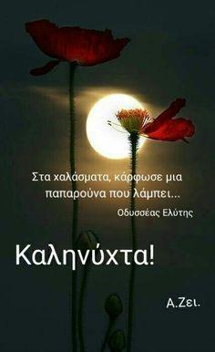 Good Night, Good Morning, Dandelion, Plants, Nighty Night, Buen Dia, Bonjour, Dandelions, Plant