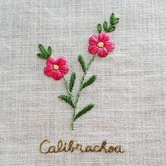 I like the idea of embroidering a flower and the scientific name.