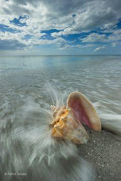 Captiva Island, FL