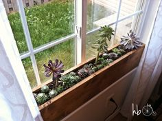 Custom built in window box for succulents or other light loving plants Macetero caja en ventana de plantas suculentas o grasas Indoor Window Planter, Indoor Window Boxes, Window Planter Boxes, Window Sill Decor, Planter Ideas, Bathroom Window Decor, Balcony Window, Diy Planters, Window Ideas