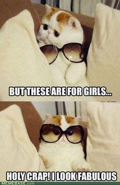 so doggone cute...