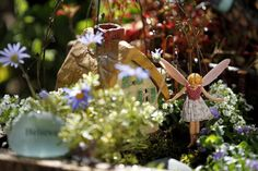 """Fairy gardens are for everybody,"""" Sheryl said of the trend of creating Lilliputian landscapes meant to be inhabited by wee winged folk. Description from summerspastfarms.com. I searched for this on bing.com/images"""