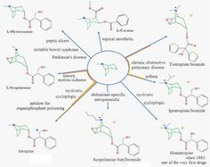With the purpose of researching and understanding the history of tropane alkaloids, we are trying to gather related documents in electronic media and in a centralized location.