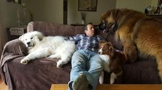 This guy is living the dream! Click here for more adorable animal pics!