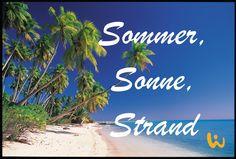 Französisch Polynesien ♥ Was will man mehr?? #sommer #sonne #strand #türkis #blauerhimmel #urlaub #reisen #wirodive #tauchen #schnorcheln #traum #tauchreisen #palmen #sandstrand #klareswasser #warm #braun #liebedeinleben