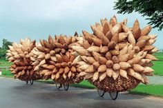 """""""Three bicycles loaded with bamboo fish traps leave Tat Vien village in Vietnam's northern province of Hung Yen"""""""