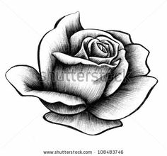 Find Rose Rendering stock images in HD and millions of other royalty-free stock photos, illustrations and vectors in the Shutterstock collection. Thousands of new, high-quality pictures added every day. Rose Drawing Tattoo, Realistic Rose Tattoo, Tattoo Design Drawings, Art Drawings, Floral Tattoo Design, Flower Tattoo Designs, Rose Tattoos, Flower Tattoos, Rose Sketch