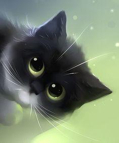 Gatitoooo :3