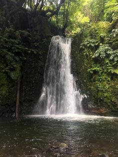 This post details my 10 day Azores itinerary and details my trip summaries, reflections, and tips to help you plan your trip. Azores, Plan Your Trip, 10 Days, Trek, Traveling By Yourself, Travelling, Waterfall, Around The Worlds, Hiking