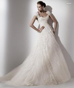 Ellie Saab Wedding Gown